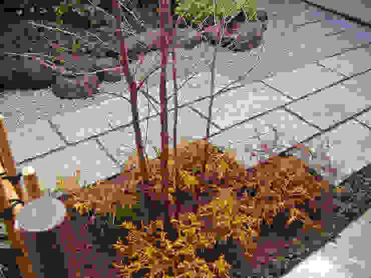 敷石テラス周りの様子 オリジナルな 庭 の 新美園 オリジナル