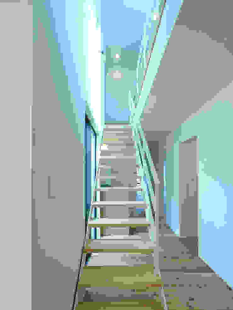 中庭の家 モダンスタイルの 玄関&廊下&階段 の 鶴巻デザイン室 モダン