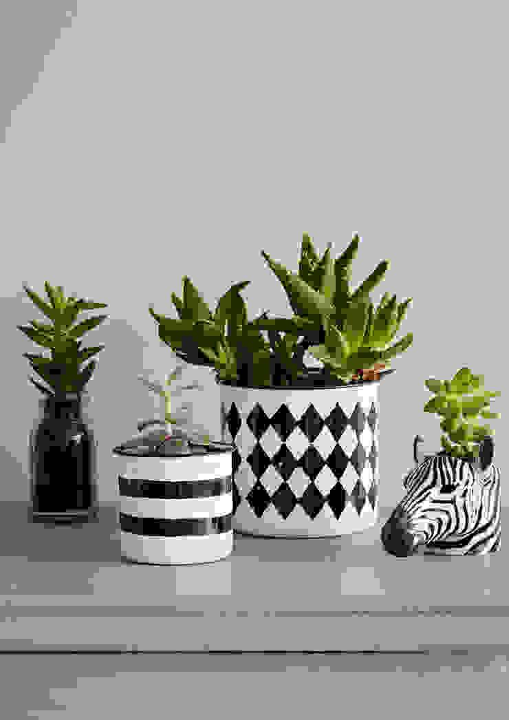 Monochrome Planter Collection de rigby & mac Ecléctico