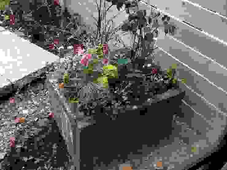 鉢植え オリジナルな 庭 の Garden design office萬葉 オリジナル