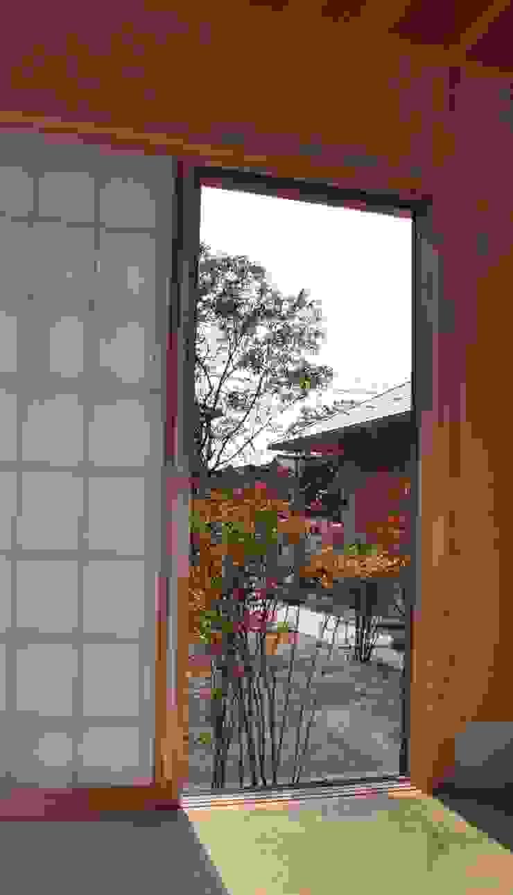 入側から前庭を見る・畳に映る南天の陰 の 樹・中村昌平建築事務所 モダン