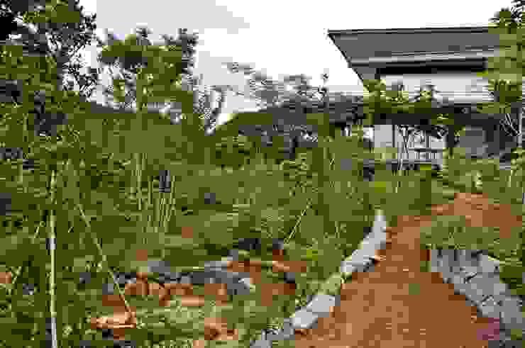 まいまい池 オリジナルな 庭 の 有限会社 温室 オリジナル
