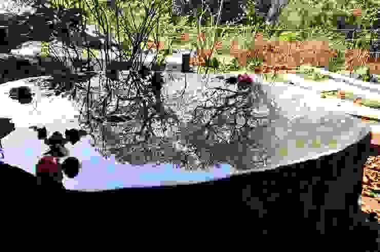 伊達冠石の鏡面仕上げ。 オリジナルな 庭 の 有限会社 温室 オリジナル