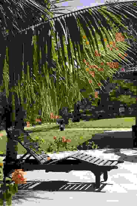 Paisagismo de Spa em Itu - SP Spa tropical por Roncato Paisagismo e Comércio de Plantas Ltda Tropical