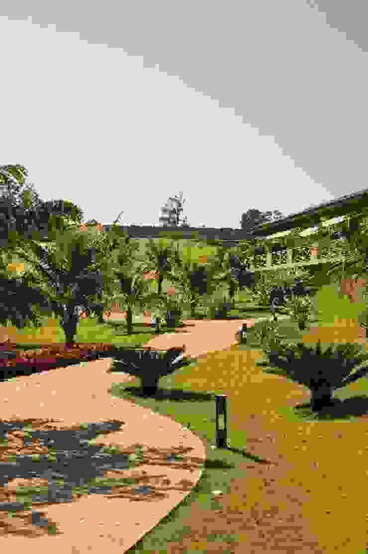 Paisagismo de Spa em Itu – SP Spa tropical por Roncato Paisagismo e Comércio de Plantas Ltda Tropical