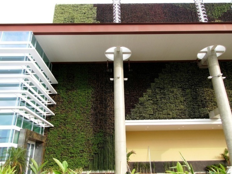 Ecoparede do Shopping Barueri Shopping Centers tropicais por Roncato Paisagismo e Comércio de Plantas Ltda Tropical