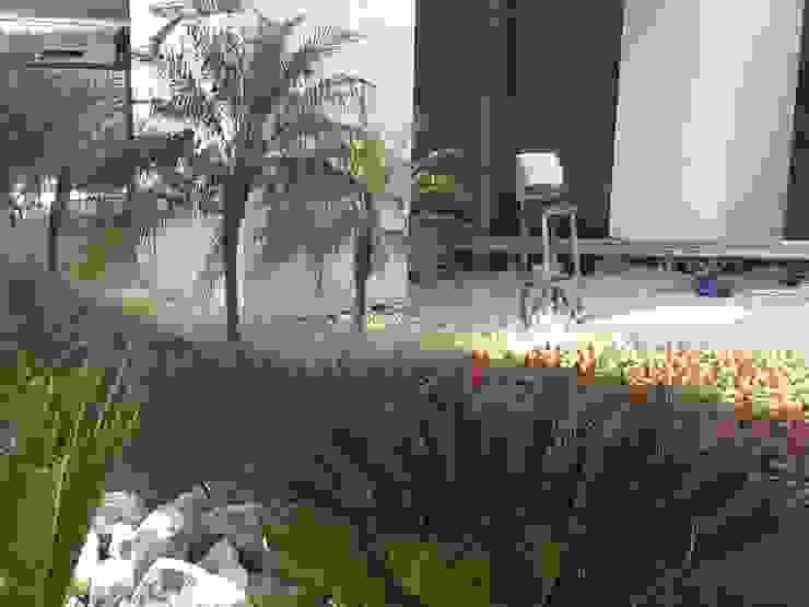 Paisagismo Shopping Sulacap( durante o processo de execução) Shopping Centers tropicais por Roncato Paisagismo e Comércio de Plantas Ltda Tropical