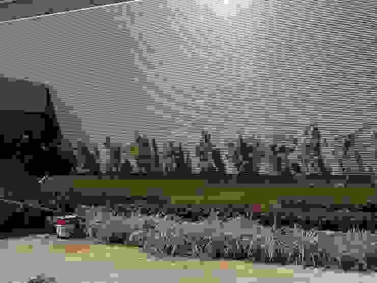 Paisagismo Shopping Sulacap (durante o processo de execução) Shopping Centers tropicais por Roncato Paisagismo e Comércio de Plantas Ltda Tropical