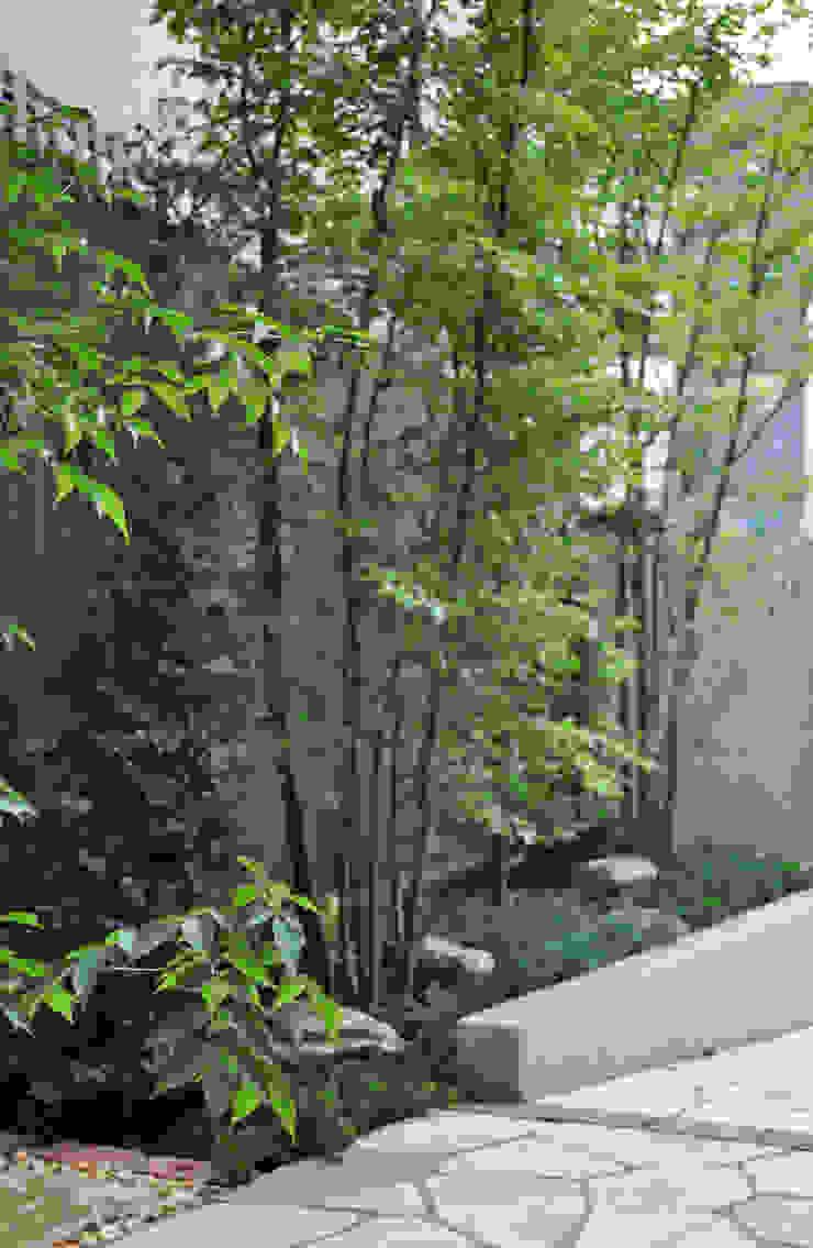 重なり合いの魅力 オリジナルな 庭 の 新美園 オリジナル