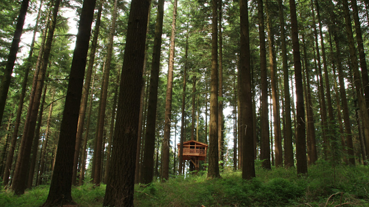 Skandinavische Hotels von Cabañas en los árboles Skandinavisch