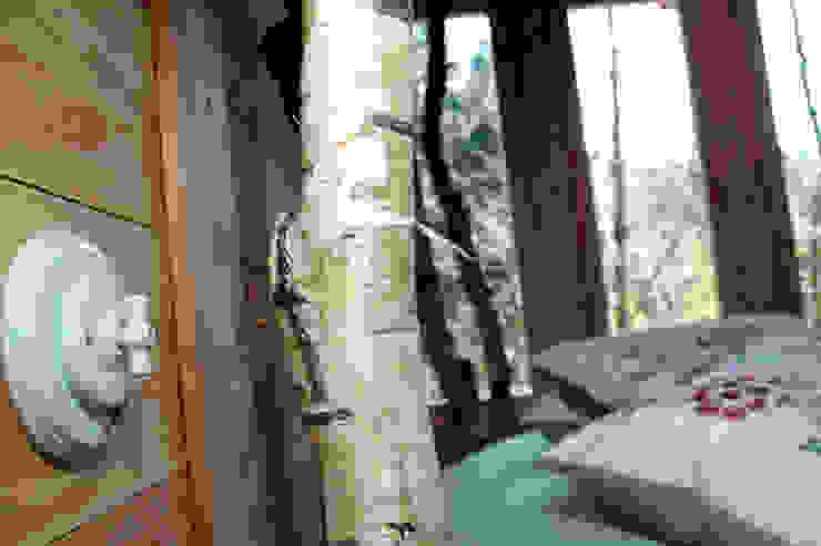 Cabaña Elaia de Cabañas en los árboles Escandinavo