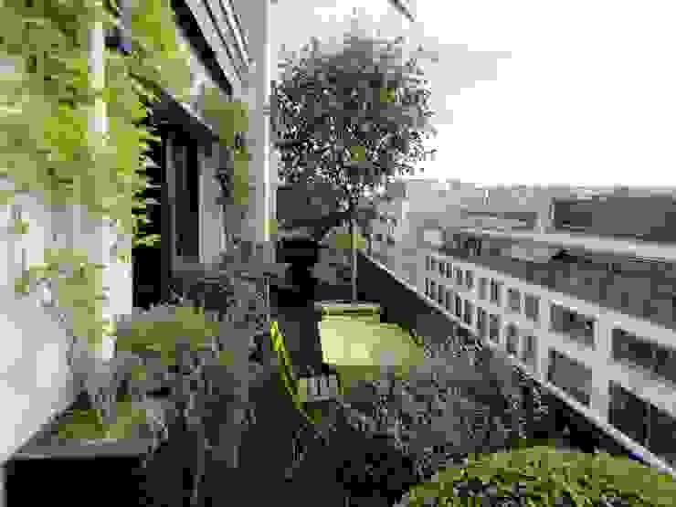 Balcon Paris 7 Balcon, Veranda & Terrasse méditerranéens par FIORELLINO paysagiste Méditerranéen