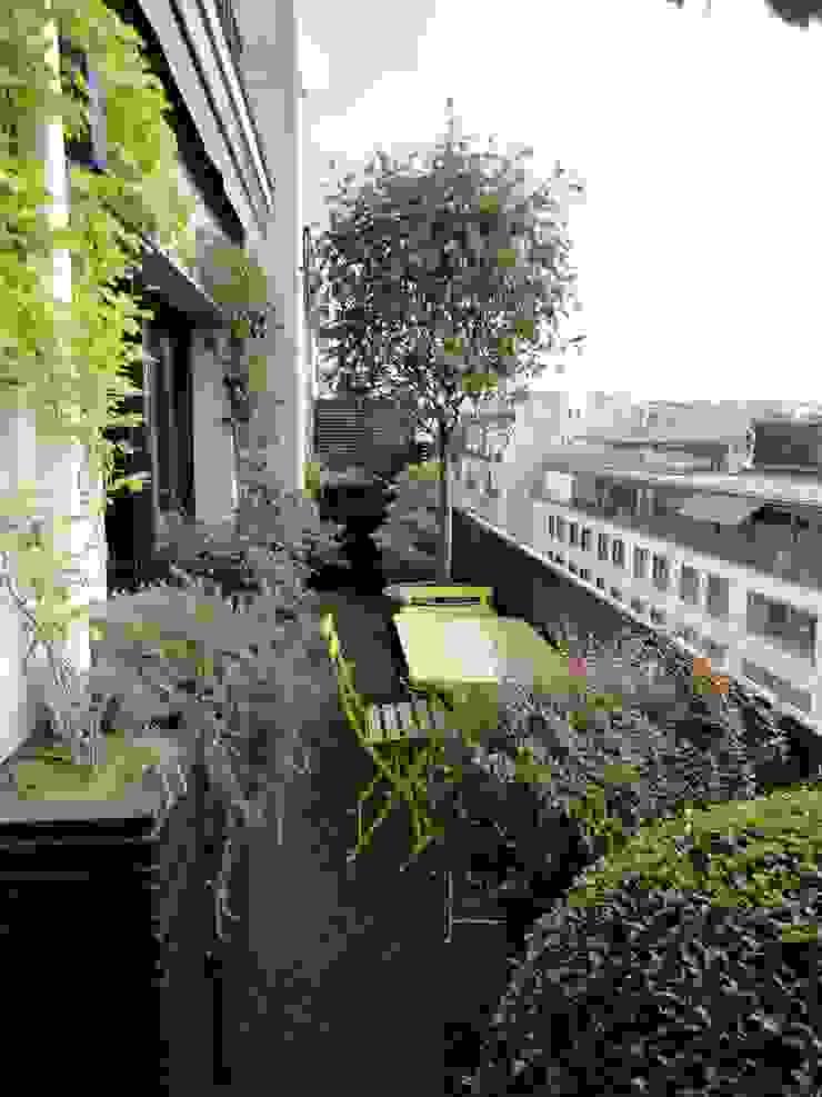 Balcon Paris 7 Balcon, Veranda & Terrasse classiques par FIORELLINO paysagiste Classique