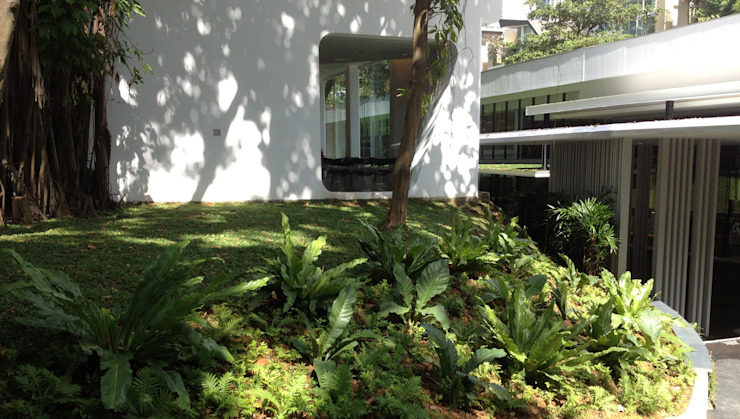 Inessence Sales Gallery Tropical style garden by Tinderbox Landscape Studio Tropical