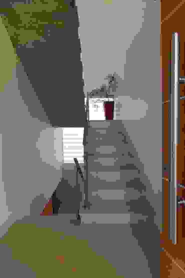 CASA VG HARAS SANTA MARIA - ESCOBAR - BUENOS AIRES - ARGENTINA Casas modernas: Ideas, imágenes y decoración de Desarrollos Proyecta Moderno