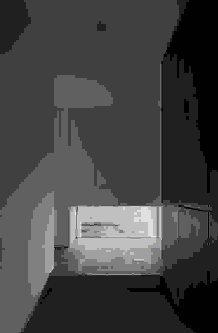 ALLEY HOUSE モダンな 窓&ドア の 吉田慎二/建築・計画ワイズスタジオ モダン