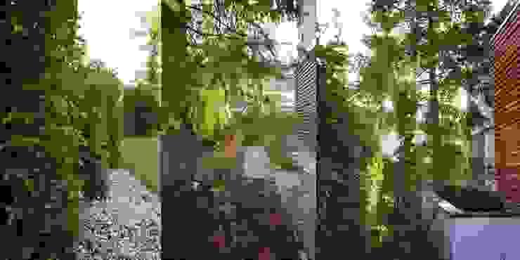 jesienne kolory od Autorska Pracownia Architektury Krajobrazu Jardin Nowoczesny