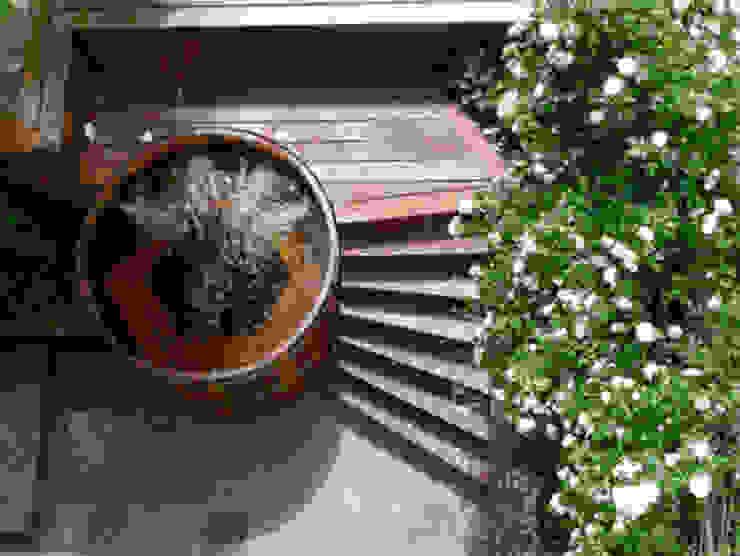 Northern lights Hot Tubs and Saunas Cedar Hot Tubs UK Pool