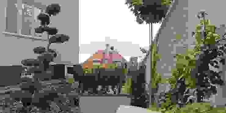 bonsai jest głównym akcentem w części frontowej od Autorska Pracownia Architektury Krajobrazu Jardin Nowoczesny