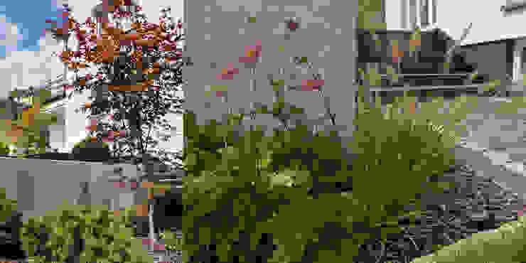 modern  by Autorska Pracownia Architektury Krajobrazu Jardin , Modern
