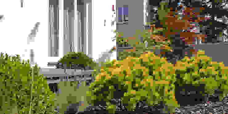 przy tarasie szeroka donica zamiast barierki od Autorska Pracownia Architektury Krajobrazu Jardin Nowoczesny