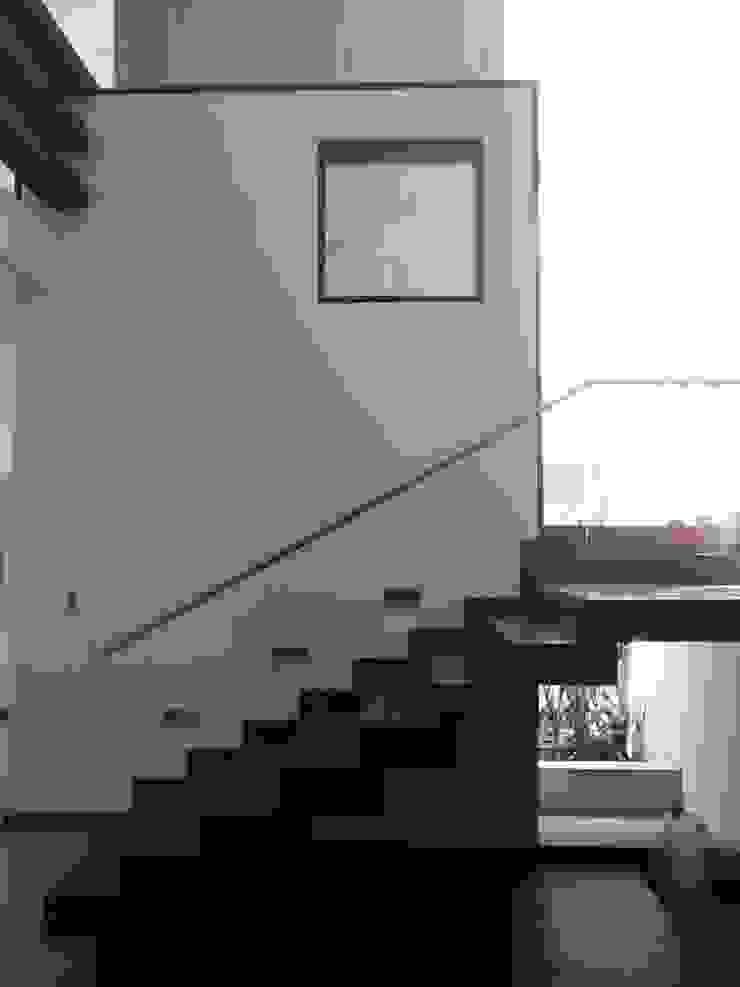 casa 329 Pasillos, vestíbulos y escaleras modernos de Hussein Garzon arquitectura Moderno Madera Acabado en madera
