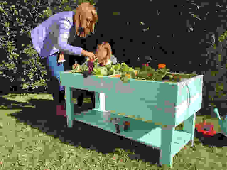 Huerta horganica para niños de Mundo Garden Moderno Madera maciza Multicolor
