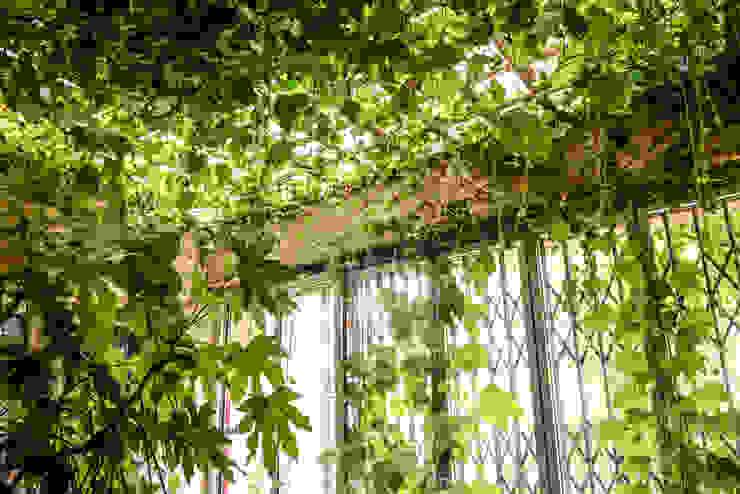 Jardines de invierno de estilo rústico de Ginkgo Giardini Rústico