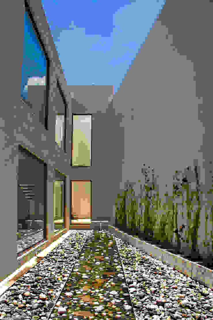Maz Arquitectos Modern garden