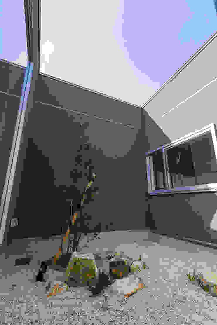 Modern Garden by NEWTRAL DESIGN Modern