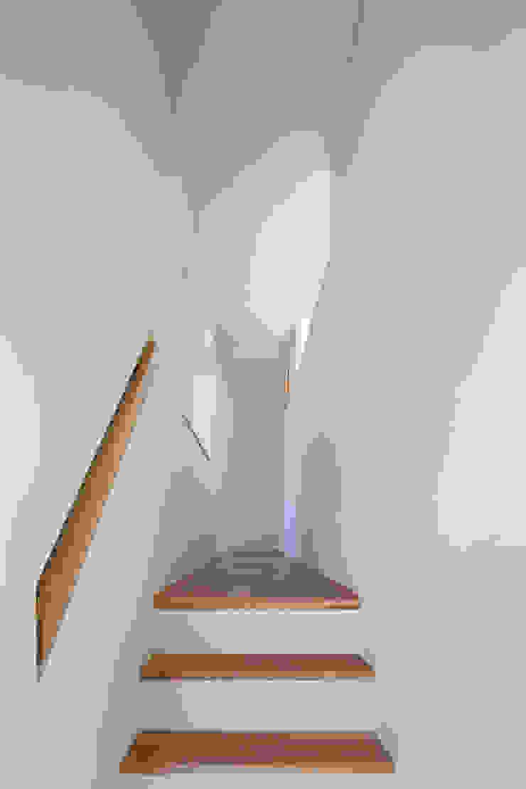 家族をつなぐスキップフロアの家-廊下- モダンスタイルの 玄関&廊下&階段 の 小田達郎建築設計室 モダン