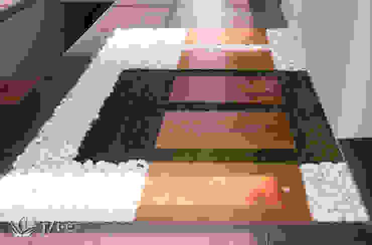 14 detalles para un jardín desde el interior Pasillos, vestíbulos y escaleras de estilo moderno de Jardineria 7 islas Moderno