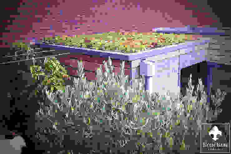 Modern style gardens by Ernst Baas Hoveniers B.V. / Ernst Baas Tuininrichting B.V. Modern