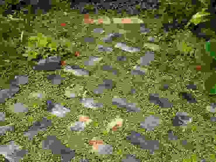 猫のいる庭 オリジナルな 庭 の ヒグラシ園藝店 オリジナル