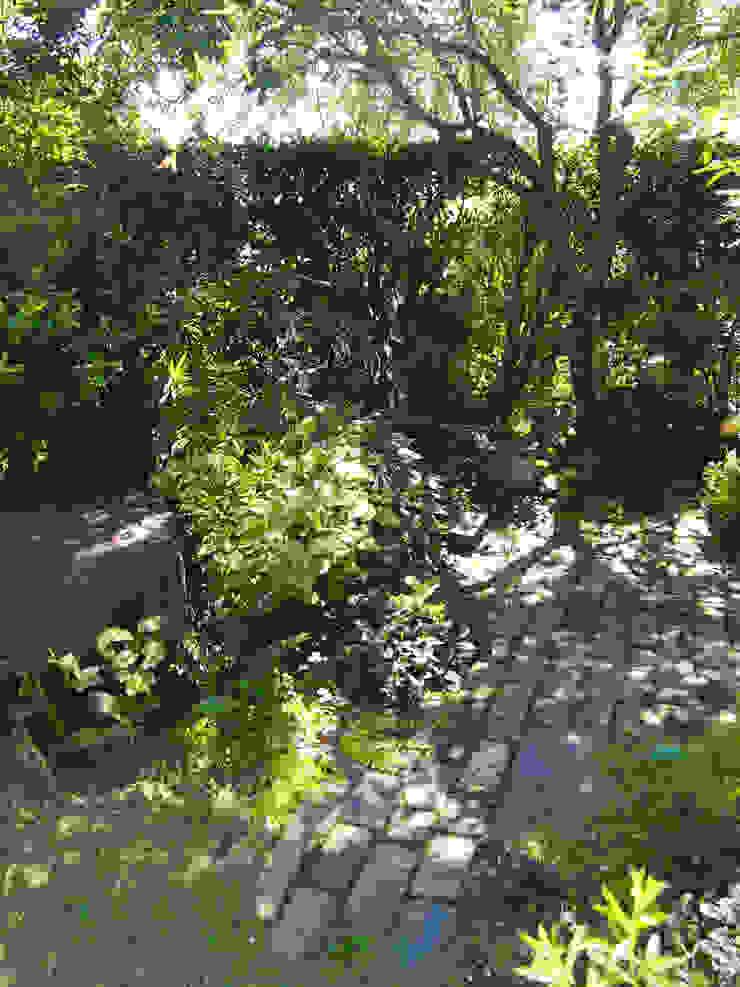 木陰の小さな庭 の ヒグラシ園藝店