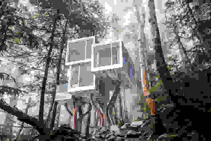 Casas de estilo  por NewNest, Moderno