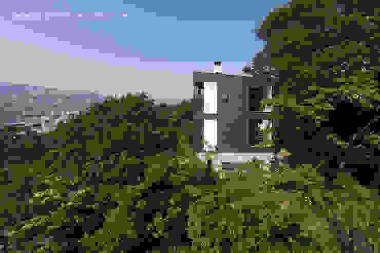 atelier137 ARCHITECTURAL DESIGN OFFICE의  주택, 모던 우드 우드 그레인
