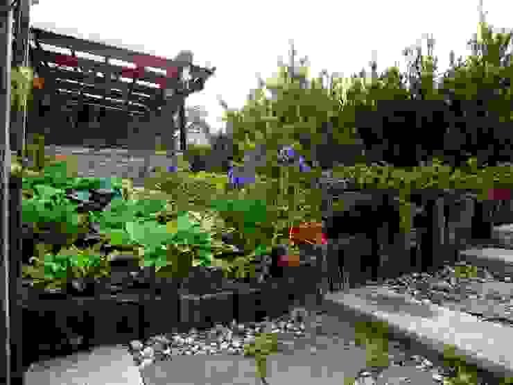 Garden Ekspert Studio Architektury Krajobrazu