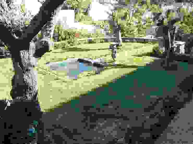 Modern garden by shfa Modern