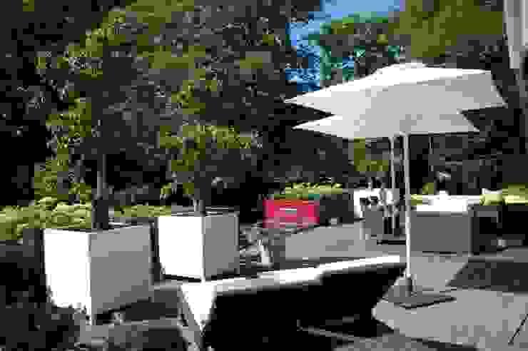 landelijke moderne tuin in Bloemendaal Moderne tuinen van Biesot Modern