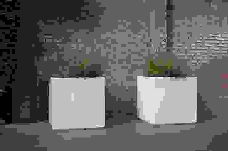 Moderne tuin Heemstede: modern  door Biesot, Modern