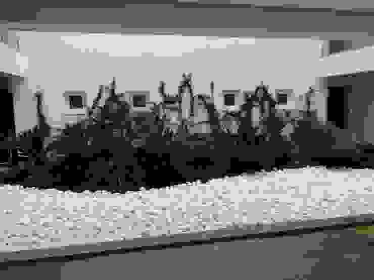 Jardines de invierno modernos de shfa Moderno