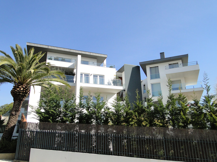 shfa Modern houses