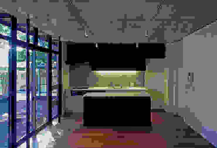 大銀杏の家 モダンな キッチン の HAN環境・建築設計事務所 モダン
