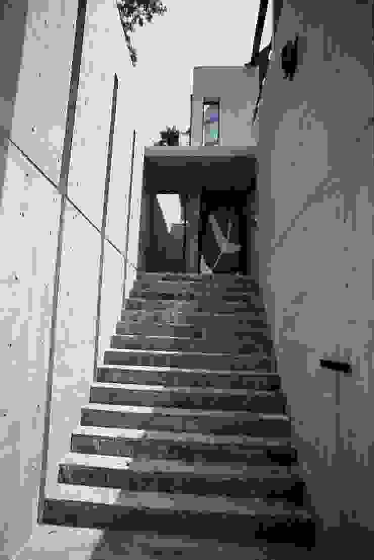 2階玄関 オリジナルスタイルの 玄関&廊下&階段 の 桑原建築設計室 オリジナル