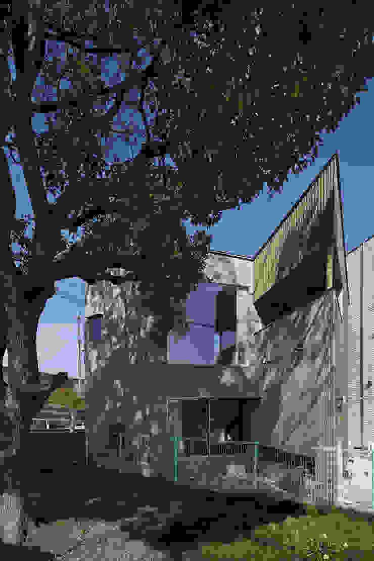 公園南側から見る オリジナルな 家 の 宮武淳夫建築+アルファ設計 オリジナル