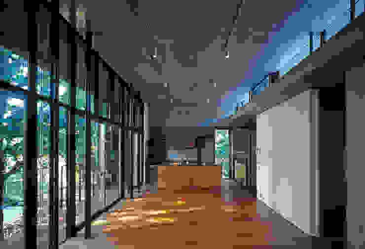 大銀杏の家 モダンデザインの リビング の HAN環境・建築設計事務所 モダン
