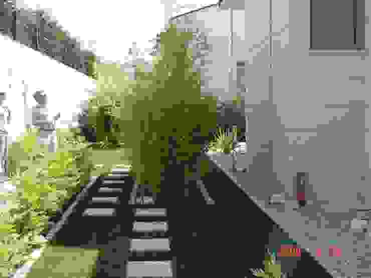 GREENLİNE PEYZAJ Jardines de estilo moderno
