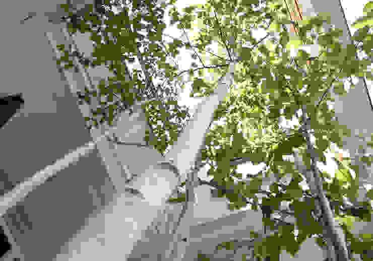 よしだみわこ建築設計事務所 Scandinavian style garden