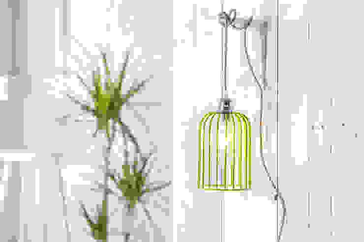 Edison Cage Pendant Light Shade - Green NuCasa WoonkamerVerlichting